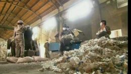 How Plastic Bottles Are Recycled Into Polyester