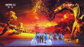 Amazing Chinese Kung Fu Performance
