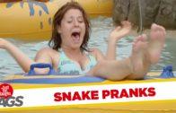 Scary Snake Prank