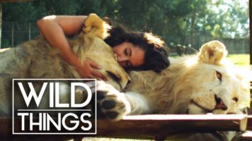Humans Who Have The Most Extraordinary Bond With Animals
