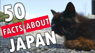 50 Shocking Facts About Japan You Won't Believe Are True