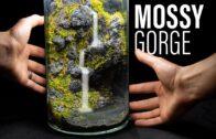 Building A Beautiful Mini Waterfall In A Jar